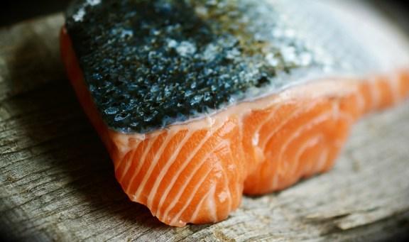 Pienso de salmón: opiniones