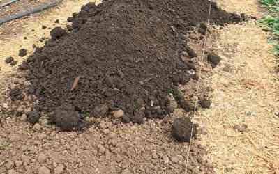 Compost (Part 1)