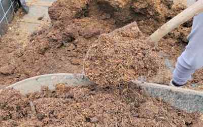 Compost (Part 2)