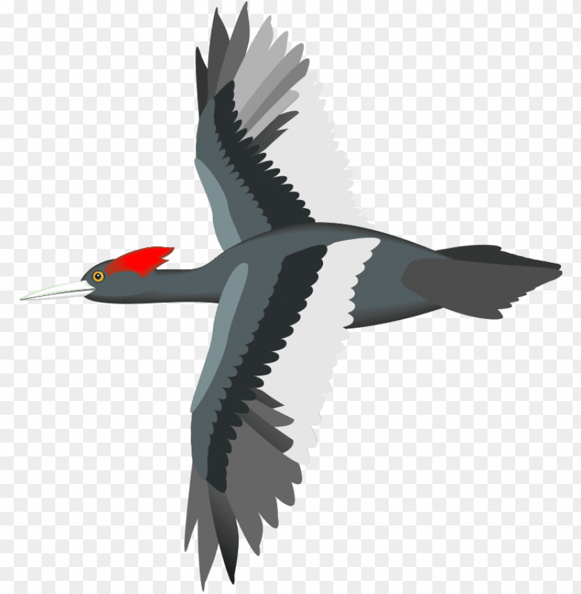 Flying Bird Vector Png Image With Transparent Background Toppng