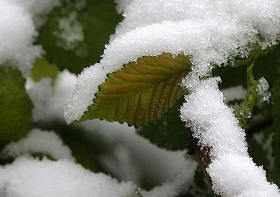 УПОЗОРЕЊЕ РХМЗ: Рано и интезивно топљење снега