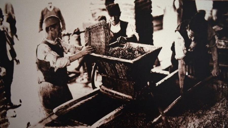 Ни краљ не може преко реда: Како су шумадијски сељаци 1930, Александра И Карађорђевића добили на суду и избацили из виноградарске задруге