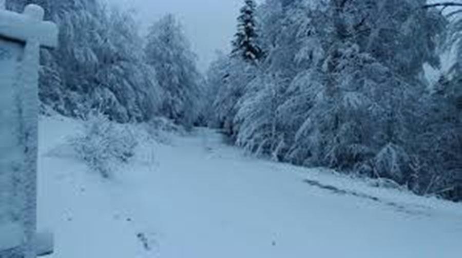 ВАТРОГАСЦИ ИЗ ТОПОЛЕ У АКЦИЈИ: Болесна бака (80) спасена из куће оковане снегом у Горњој Шаторњи