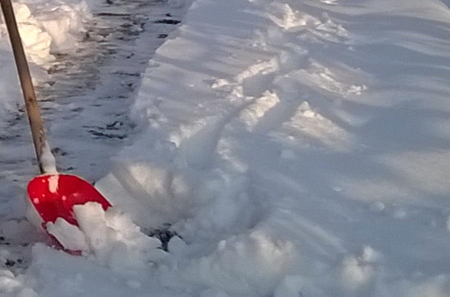 За дан чишћења снега можете да зарадите 1.800 динара