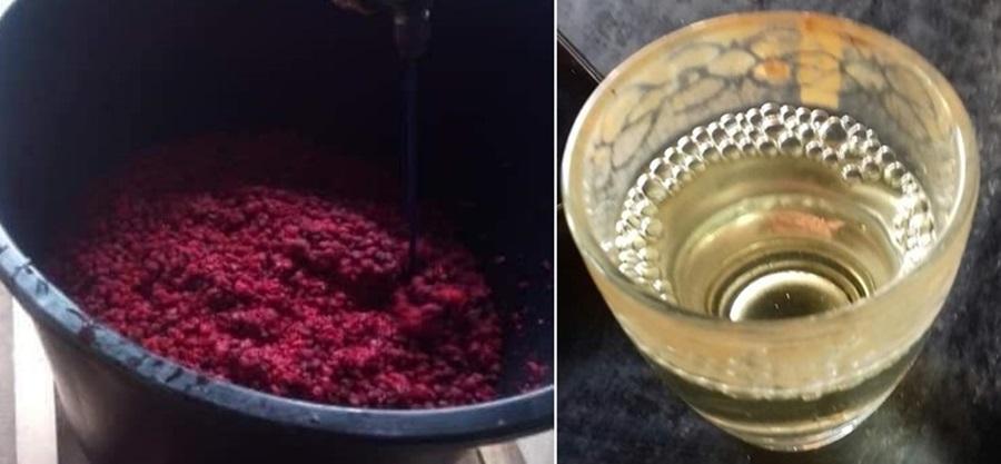У Шумадији потекла ракија од малине: Да ли ће се уместо шљивовице служити малиновача?