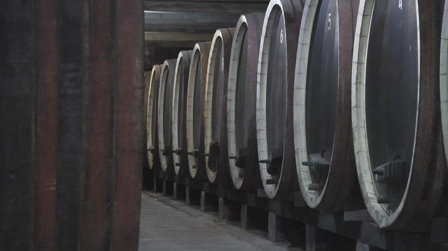 Квалитет пре квантитeта: Краљева винарија производи 20 хиљада боца најфинијих вина у Србији