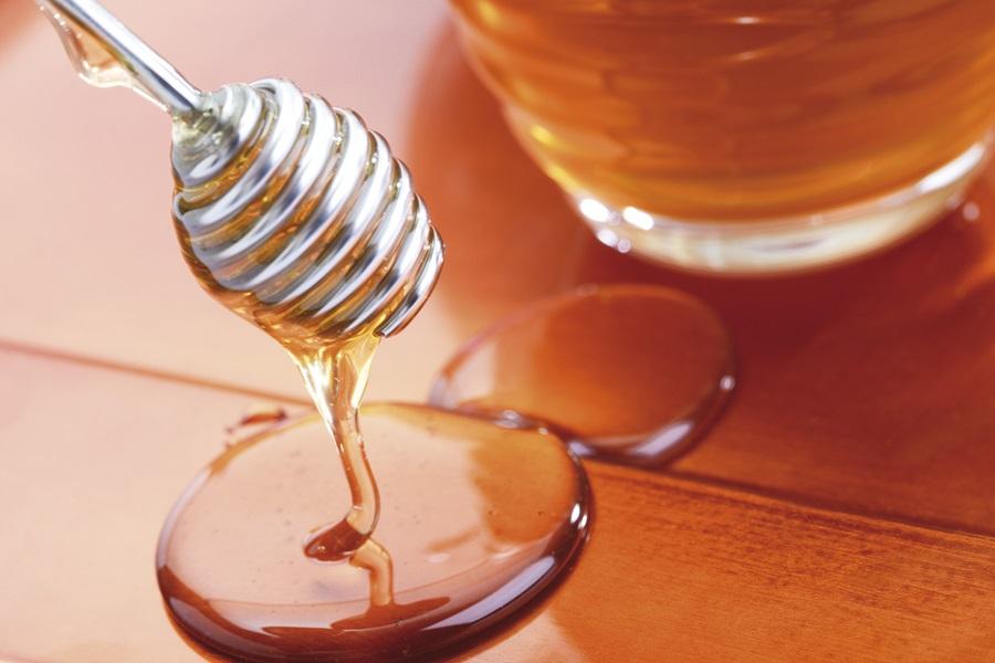 Отворен погон за прикупљање меда у Рачи