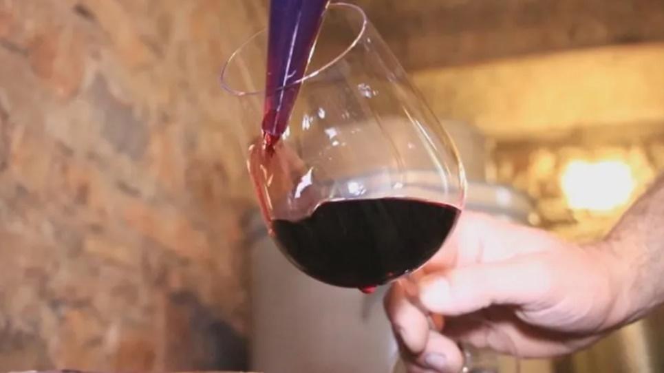 Међународно оцењивање вина и ракија у уторак у Тополи
