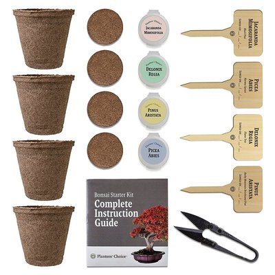 unique gift idea planters' choice bonsai starter kit to grow 4 bonsai trees with comprehensive instruction booklet includes bonsai tree trimmer