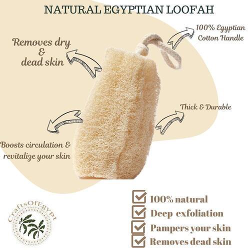 Natural and Raw CraftsofEgypt Bath Loofah Sponge