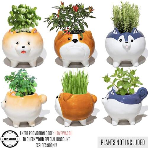 Succulent Planter from Wacoii 3 pcs Handcrafted Puppy Design Plant Pots Makes Great Gift for Dog Lovers