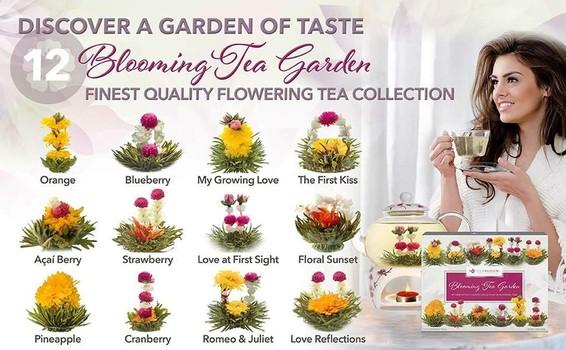 Teabloom best flowering tea 12-variety pack