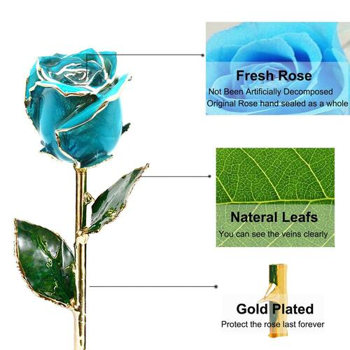 100% uniquely hand-crafted 24k gold dipped fresh roses by Icreer