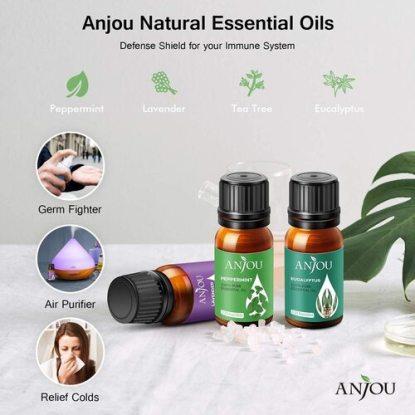 ANJOU 100% Pure & Healthy 14 Bottles Essential Oils Set