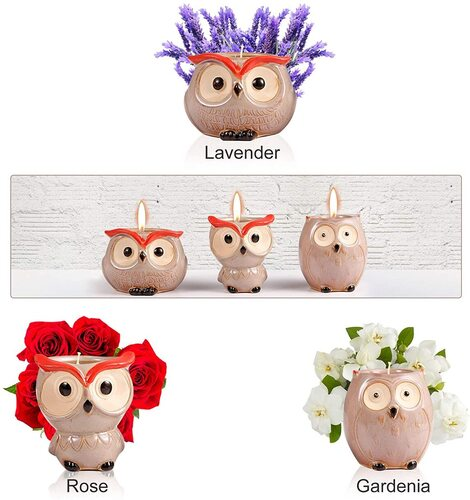 Owl Lovers Gift Idea by Hsuner