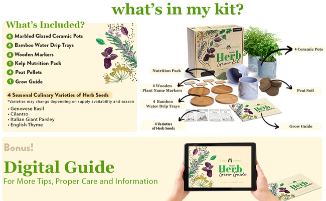 HOME GROWN Deluxe Culinary Herb Grow Starter Kit Gift Set included Ceramic Pots