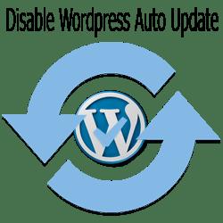 Cara Mendisablekan Auto Update WordPress Tanpa Plugin
