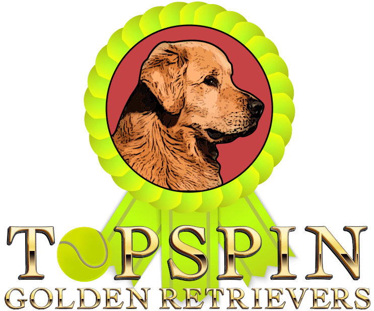 TopSpin Goldens