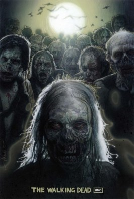 the-walking-dead-tv-series-large-724523569