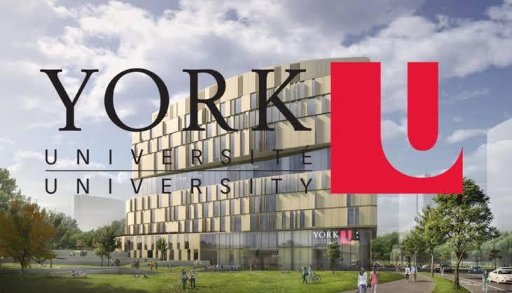 York Science scholars award 2020