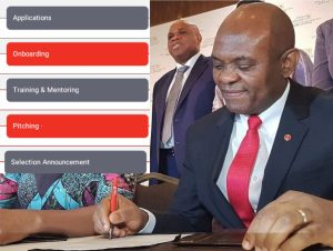 SELECTION PROCESS OF 2020 TONY ELUMELU FOUNDATION (TEF) GRANT