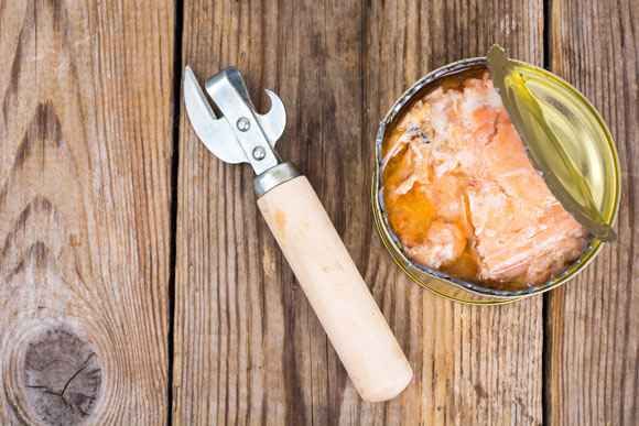 is canned salmon safe for cats