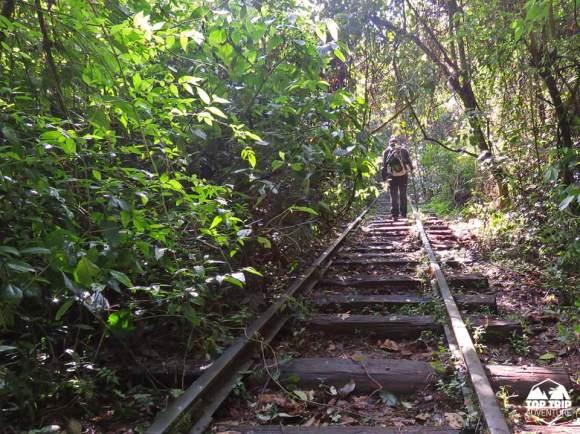 TOP TRIP ADVENTURE | FERROVIA DO VINHO