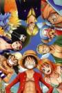 One Piece Saison 19
