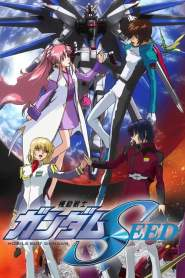 Mobile Suit Gundam Seed Destiny VF