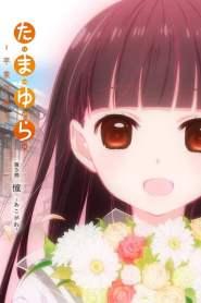 Tamayura: Sotsugyou Shashin Part 3 – Akogare (2015)