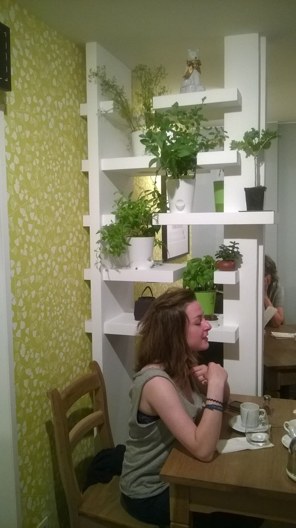 Superbe mur d'herbes aromatiques