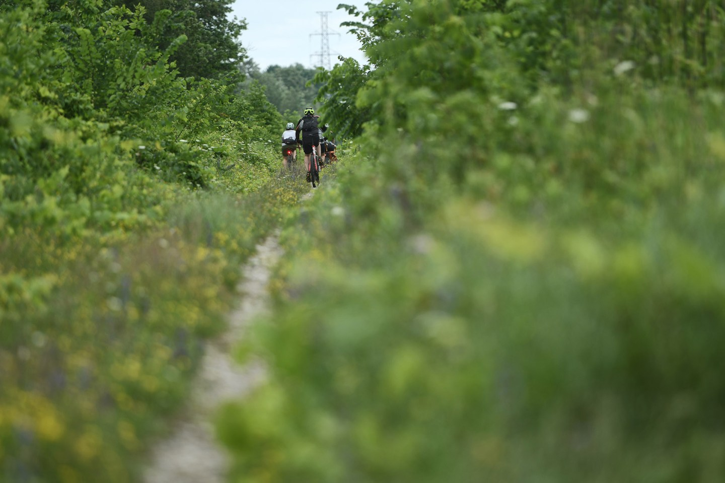 BEER TO BEER: CYCLING FROM FIXED GEAR TO ELORA BREWING COMPANIES