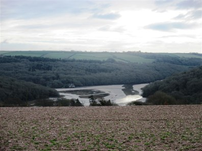 Looking down over the estuary, low tide today