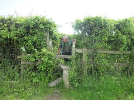 Another stile....