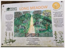 LONG MEADOW