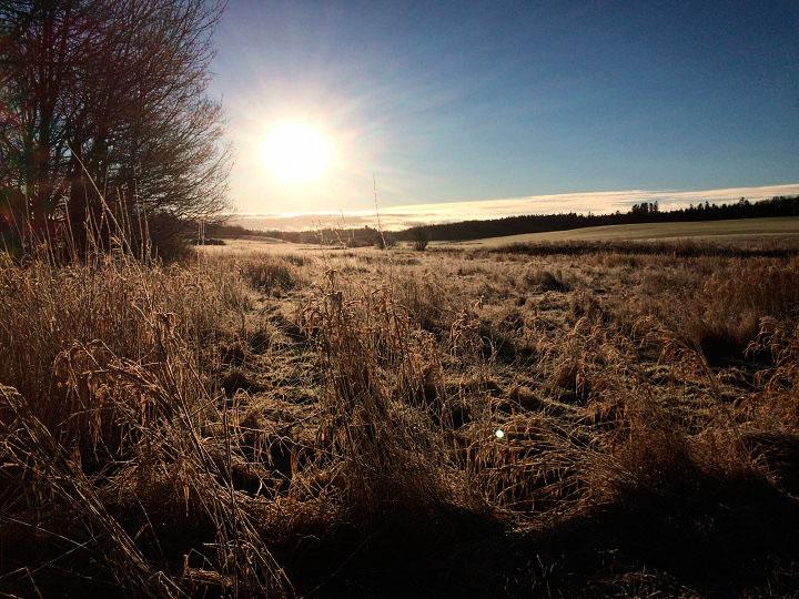 Morgensolen bryder frem på en frostklar dag