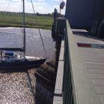 Crossing Eider