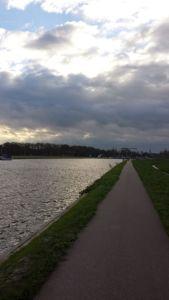 Bike path near Haarlem