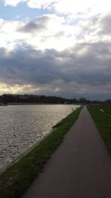 Bike path near Haarlem
