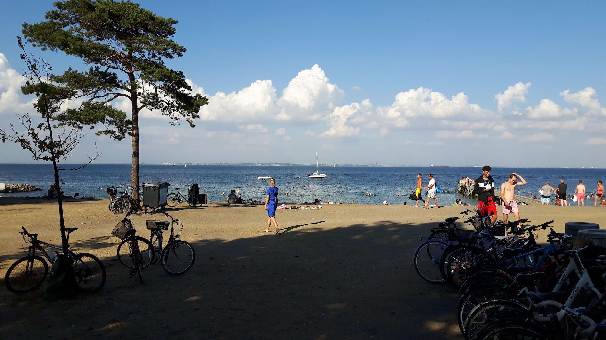 Beach in Denmark south of Helsingor