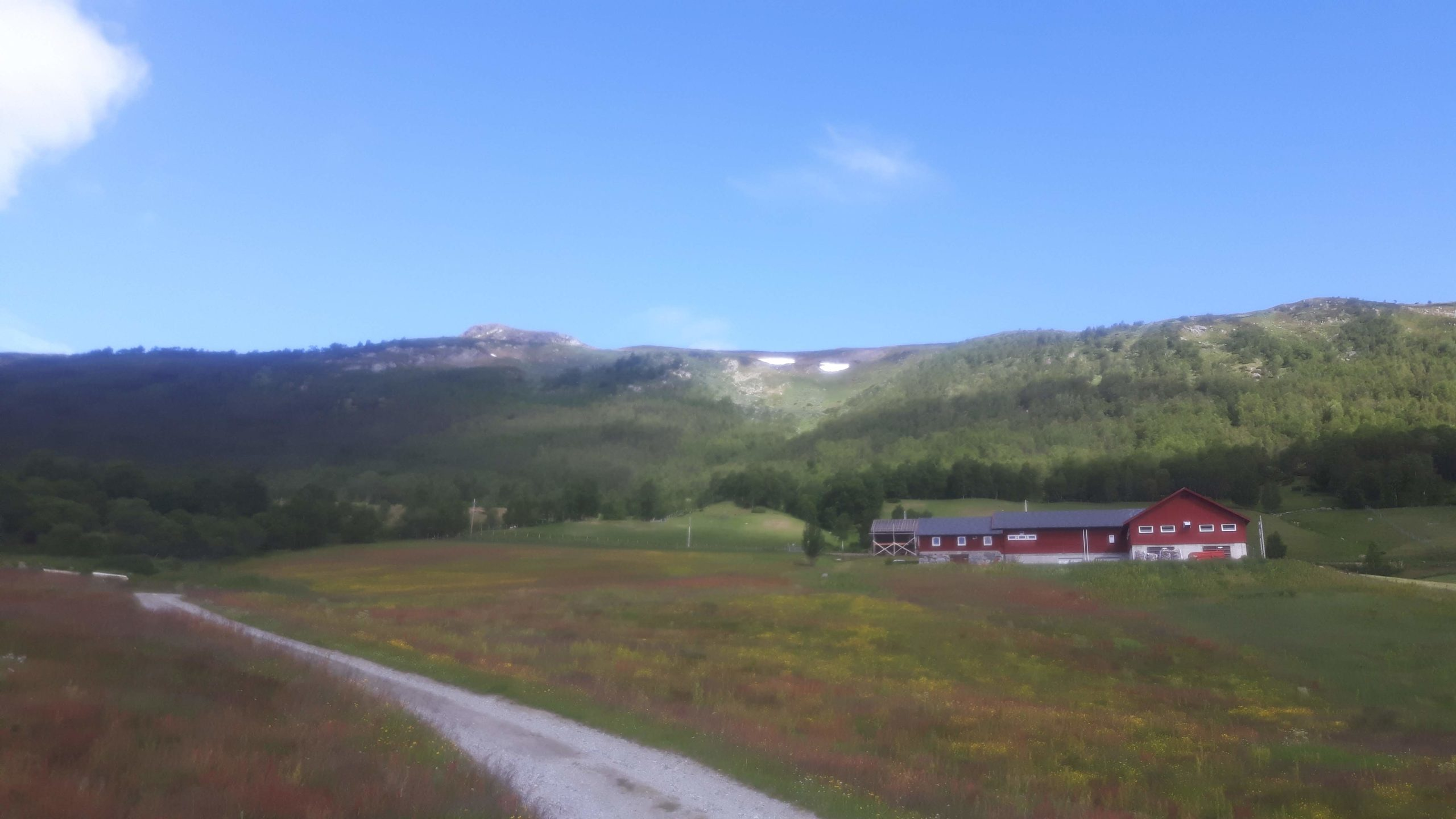 Near Ustaoset Norway