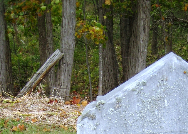Autumn at Bayview Cemetery