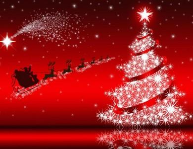 Résultats de recherche d'images pour «féérie de Noël»