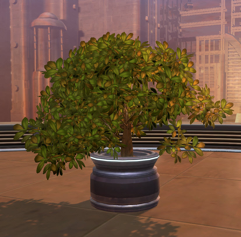 swtor-potted-plant-green-bush