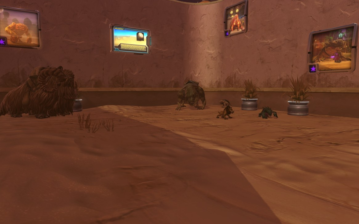 Desert-display