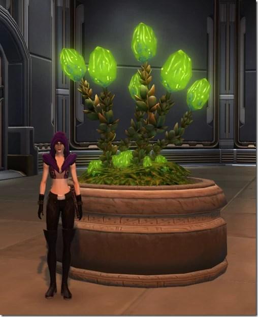 Glowing Plague Bulbs