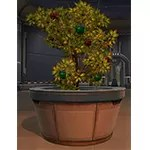 Life Day Medium Potted Tree