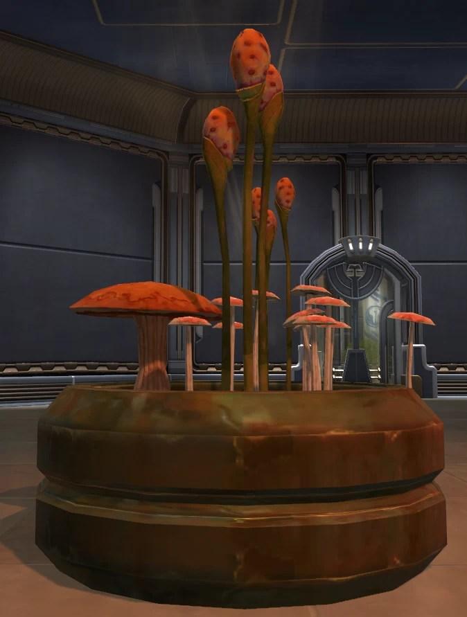 Potted Plant Yavin Fungus
