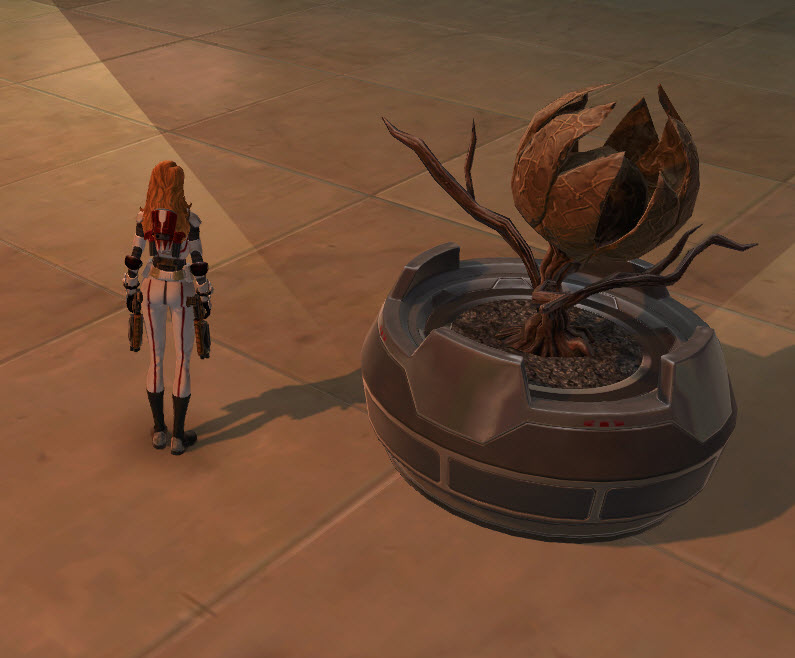 swtor-potted-plant-lifeless-bud-2