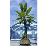 Potted Tree: Breezy Palm